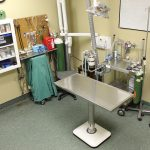 Modern Surgery & Procedures Rooms